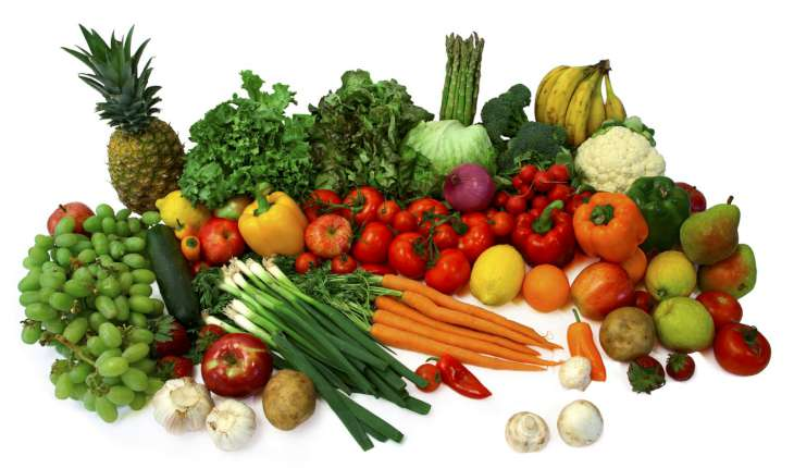 vegan diet-730x430