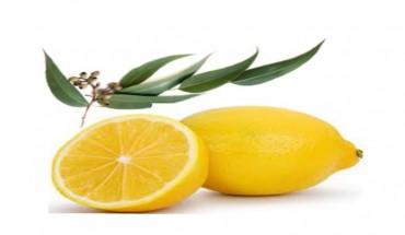lemonscent4