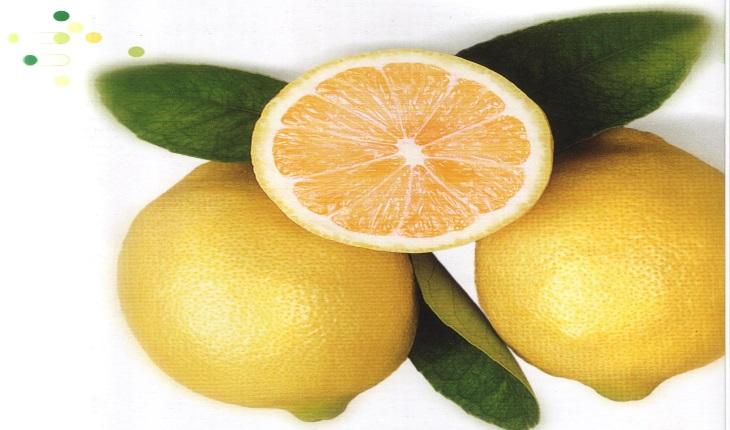 lemonscent7